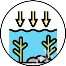 Acidificazione del suolo